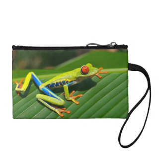 Tropical rainforest green red-eyed tree Frog Coin Wallet