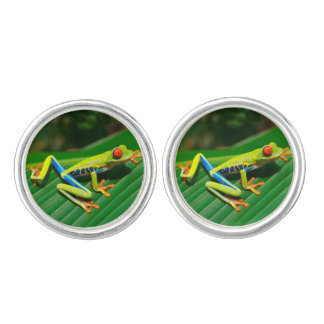 Tropical rainforest green red-eyed tree Frog Cufflinks