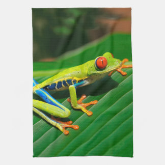 Tropical rainforest green red-eyed tree Frog Hand Towel