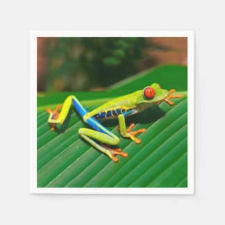 Tropical rainforest green red-eyed tree Frog Paper Napkins