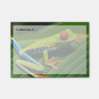Tropical rainforest green red-eyed tree Frog Post-it Notes