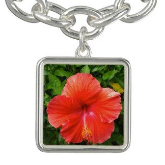 Tropical Red Hibiscus Bonita Springs Florida