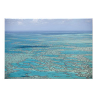 Tropical reef, Great Barrier Reef, Queensland, Photo Art