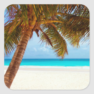 Tropical Relaxing Beach Palm Scene Square Sticker
