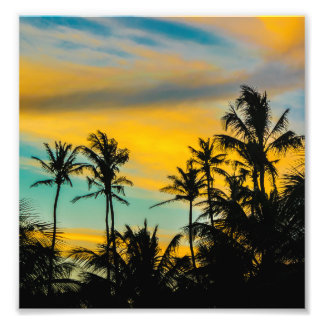 Tropical Scene at Sunset Time Art Photo