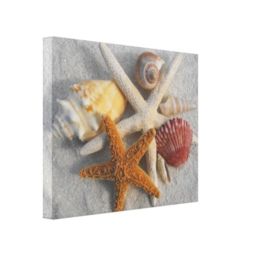 Tropical Seashell/Starfish White Sand Photo Canvas Gallery Wrapped Canvas