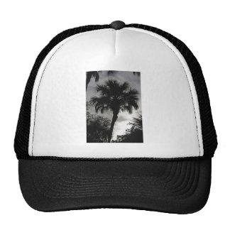 Tropical Silhouette Cap