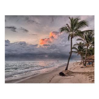 Tropical Storm Incoming Postcard