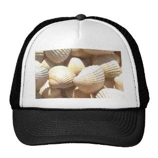 Tropical Sunny Exotic Sea Shells Cap