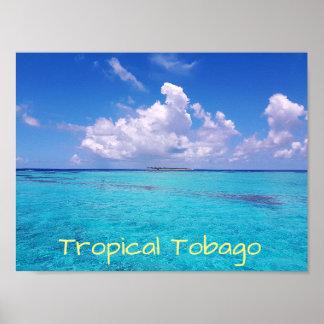 Tropical Tobago Caribbean Poster
