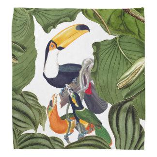Tropical Toucan Birds Wildlife Animal Bandana