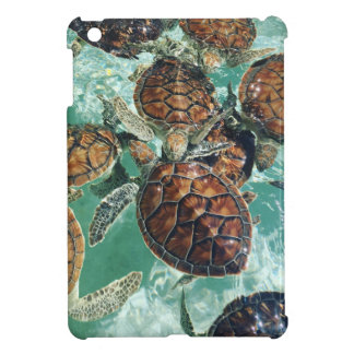 Tropical Turtles (Kimberly Turnbull Photography) Cover For The iPad Mini