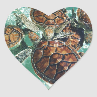 Tropical Turtles (Kimberly Turnbull Photography) Heart Sticker