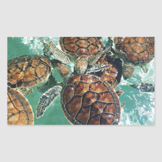 Tropical Turtles (Kimberly Turnbull Photography) Rectangular Sticker