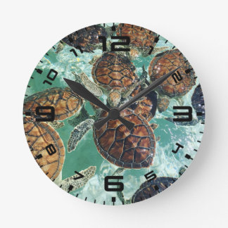 Tropical Turtles (Kimberly Turnbull Photography) Round Clock