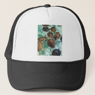 Tropical Turtles (Kimberly Turnbull Photography) Trucker Hat