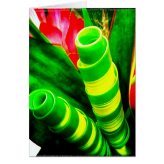 Tropical Twisted Ti Leaves Greeting Card