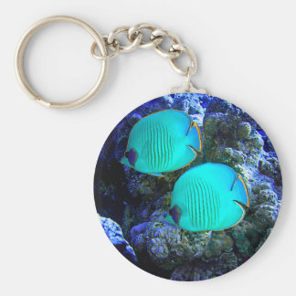 Tropical Undersea Fish Swimming In Coral Key Ring
