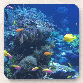 Tropical underwater fish coaster