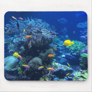 Tropical underwater fish mouse pad