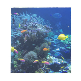Tropical underwater fish notepad