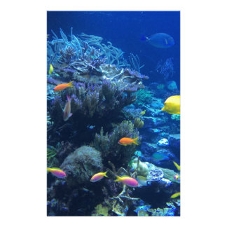 Tropical underwater fish stationery