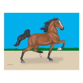 Trotting American Saddlebred Postcard