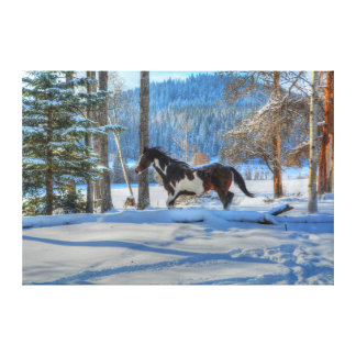 Trotting Pinto Paint Stallion & Winter Snows Gallery Wrap Canvas