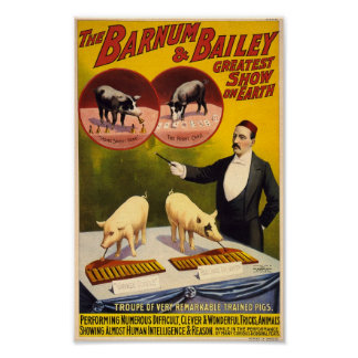 Troupe of Remarkable Trained Pigs Circus Poster