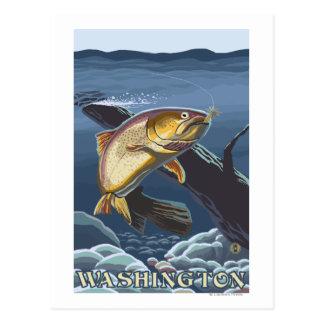 Trout Fishing Cross-Section - Washington Postcard