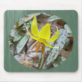 Trout Lily Wildflower - Erythronium americanum Mouse Pad