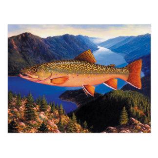 Trout Postcard