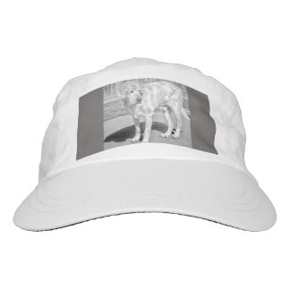 """Troy Baby"" Performance Cap"