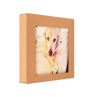 Troy Baby Wall Art Canvas