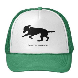 Trucker hat playful black lab