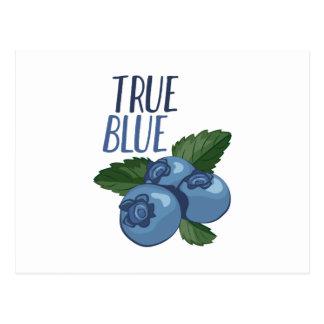 True Blue Postcard