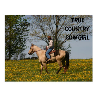 True Country Cowgirl Postcard