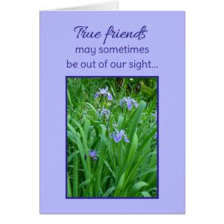 True friends... greeting card