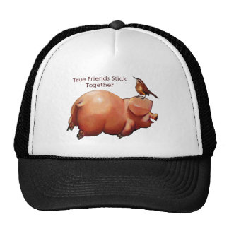 True Friends Stick Together: Cute Pig With Bird Cap
