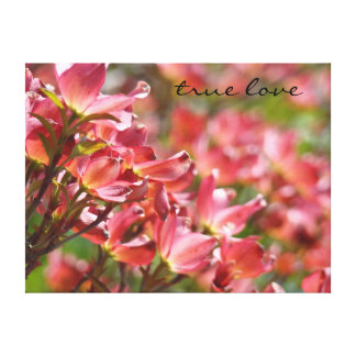 true love art prints canvas Pink Dogwood Flowers Stretched Canvas Print