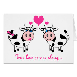 True love comes along... Happy cows Card