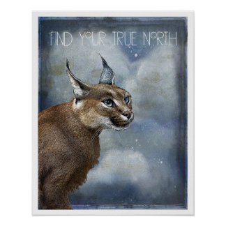 True North Bobcat Art Poster