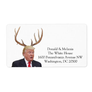 Trump Christmas: Deer Mr. President
