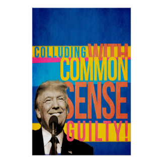 Trump: Colluding with common sense Poster