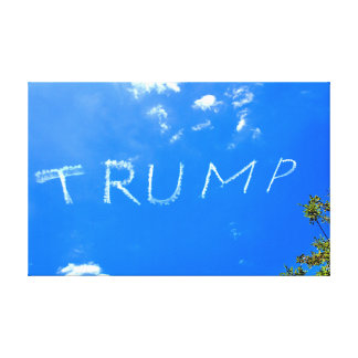 Trump, just vapour trails. canvas print