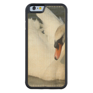 Trumpet Swan Carved® Maple iPhone 6 Bumper Case