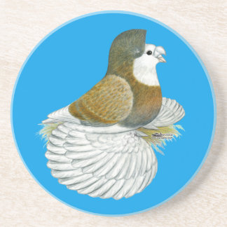 Trumpeter Pigeon AOC Baldhead Coaster