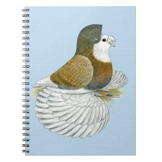 Trumpeter Pigeon AOC Baldhead Notebooks