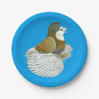 Trumpeter Pigeon AOC Baldhead Paper Plate