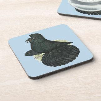 Trumpeter Pigeon Black Coaster